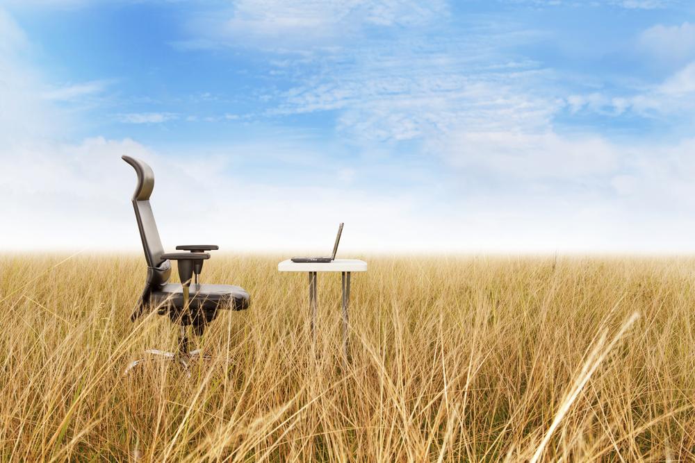 Desk chair in a field